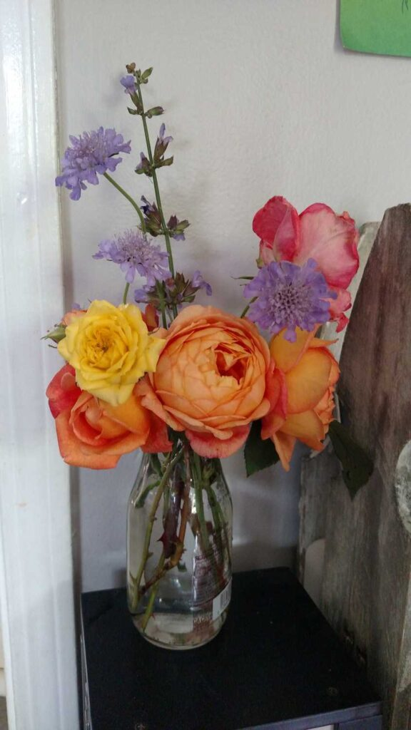 cut bouquet of flowers from my flower beds