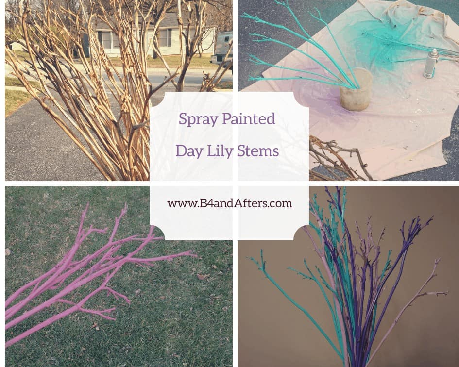 https://www.b4andafters.com/spray-painted-flower-stems/
