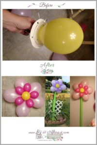 before and after of flower balloons