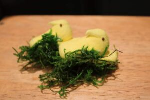 Third step to Marshmallow Peeps nest, glue faux moss to bottom of marshmallow chicks