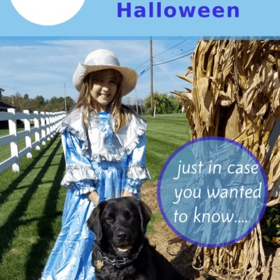 girl in light blue colonial costume with black dog sitting in front of her