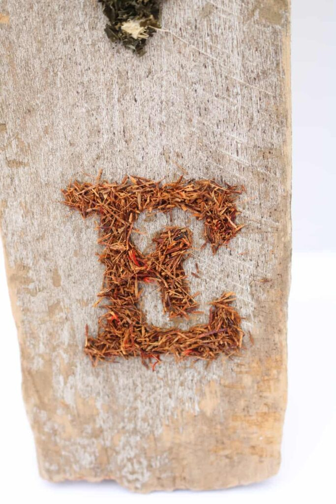 rooibos tea leaves in the shape of the letter E