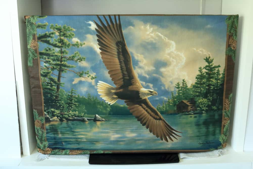 eagle print tv dust cover