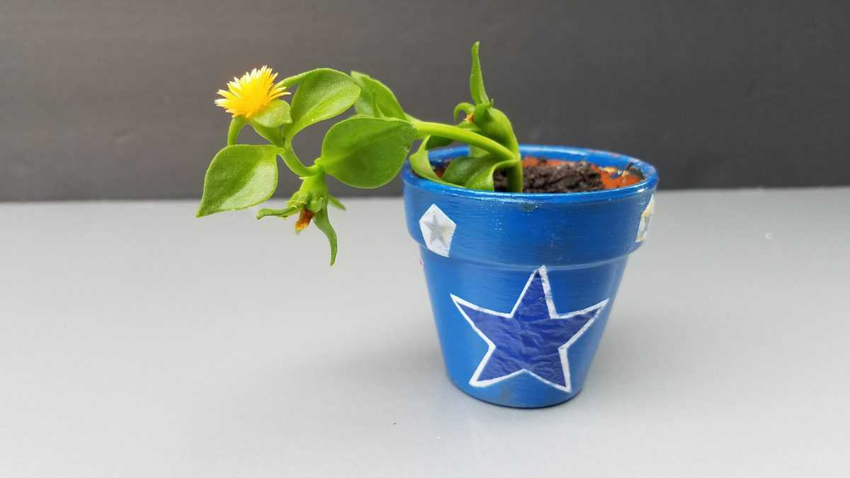 blue pot with decoupaged stars