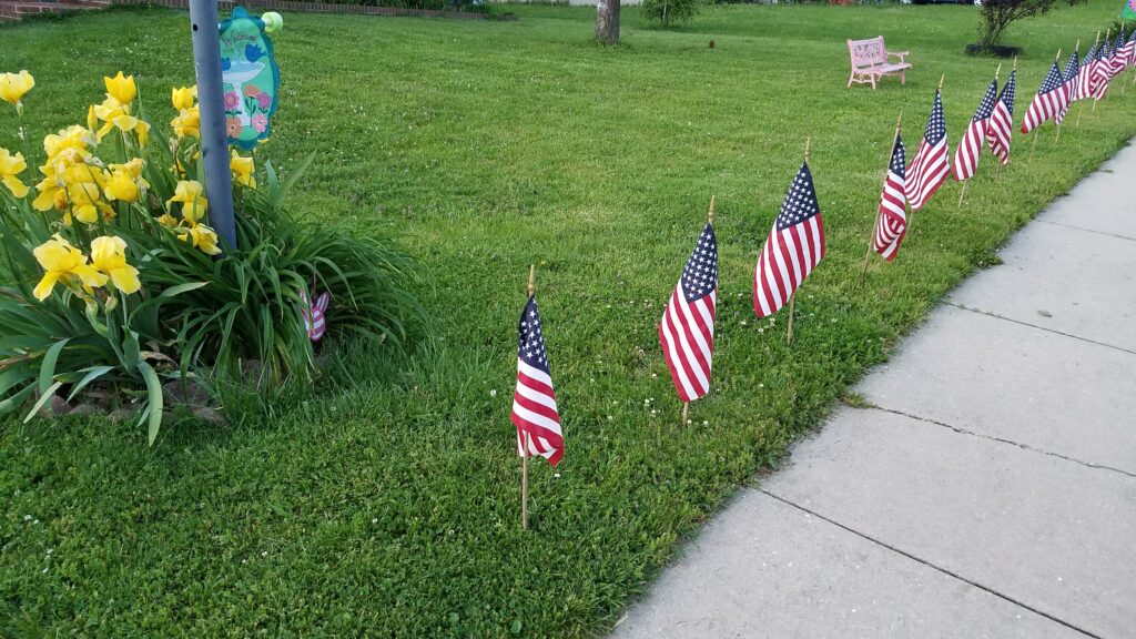 flags in the grass lining a sidewalk