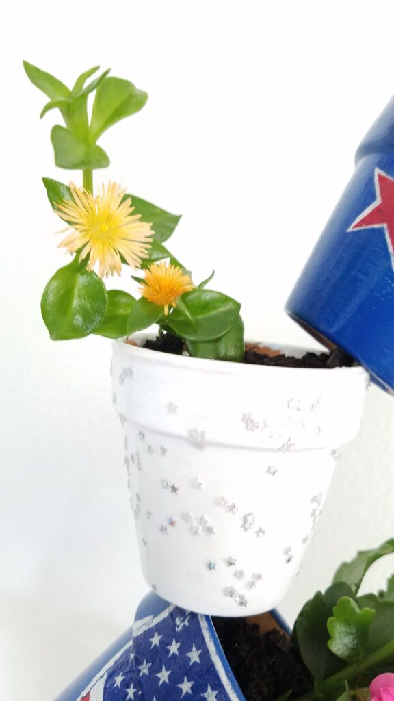 white mini terra cotta pot with yellow flower succulent