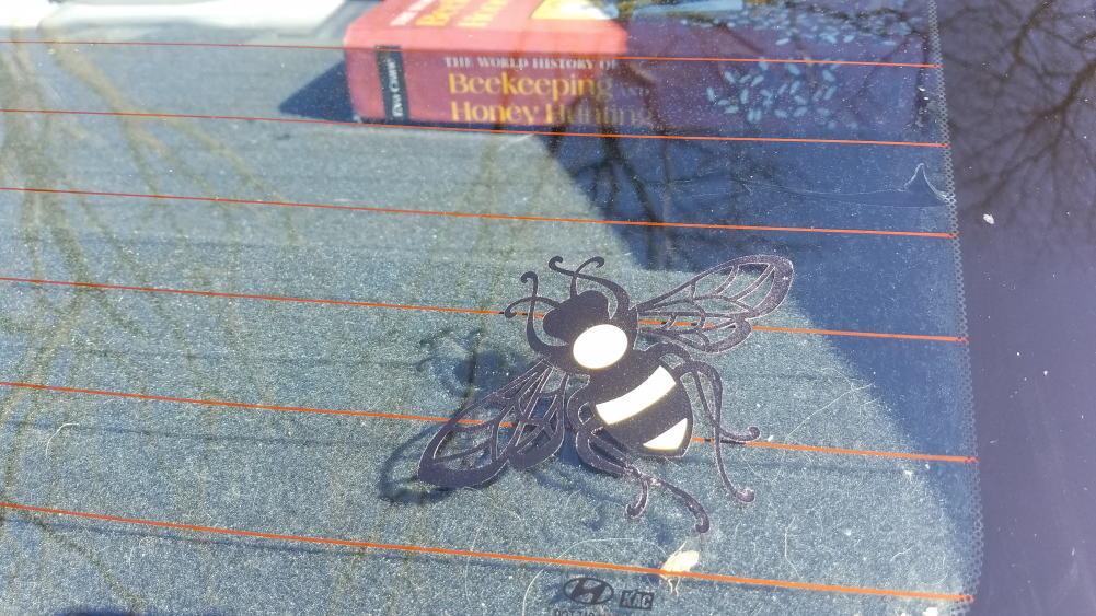 Bee decal in back car window