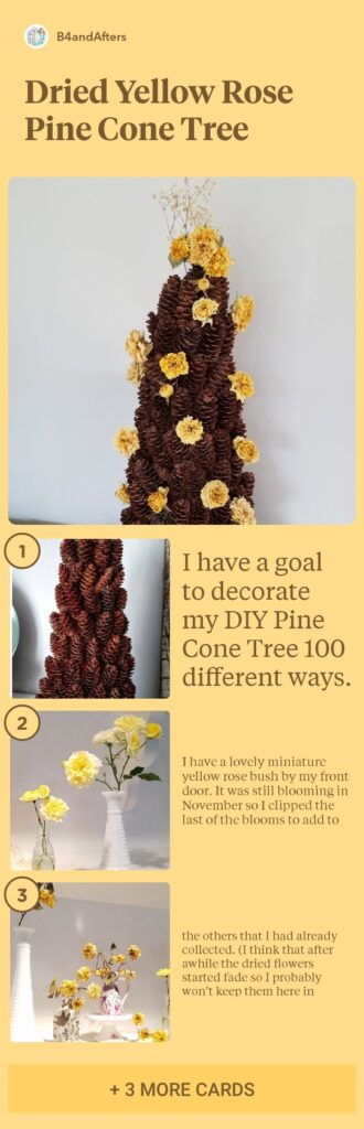 step by step dried roses on a pine cone tree