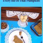 pumpkin seeds, pumpkin bread, pumpkin frozen yogurt on a blue background