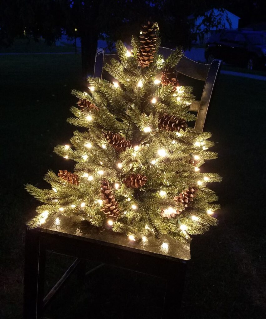 tree lit up at night in a chair