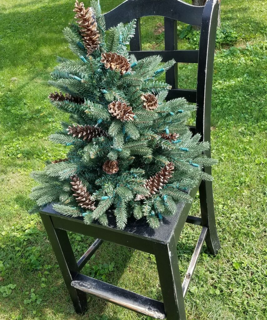 tree with pine cones on a chair
